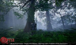 Pre-Alpha Tropical Rainforest biome - 1.jpg