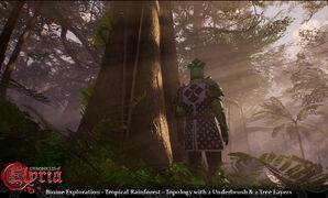 Pre-Alpha Tropical Rainforest biome - 2.jpg