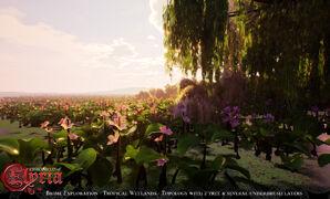Pre-Alpha Tropical Wetland (freshwater) biome - 8.jpg