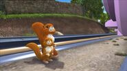 KokoandtheSquirrels11