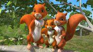 KokoandtheSquirrelspromo2