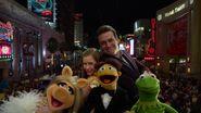 Muppets 62