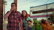 Muppets 24