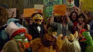 Muppets 60