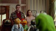 Muppets 30