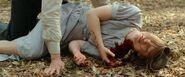Mia Wasikowska - The devilallthetime