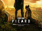 Star Trek: Picard (2020 series)