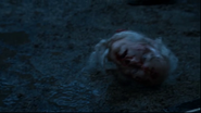 Ron Donachie's severed head in Game of Thrones-The Old Gods and the New