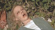 Gwynethpaltrow-malice