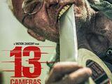 13 Cameras (2016)