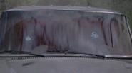 Car Head Shots