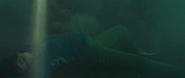 Sonja Bennett - The Fog