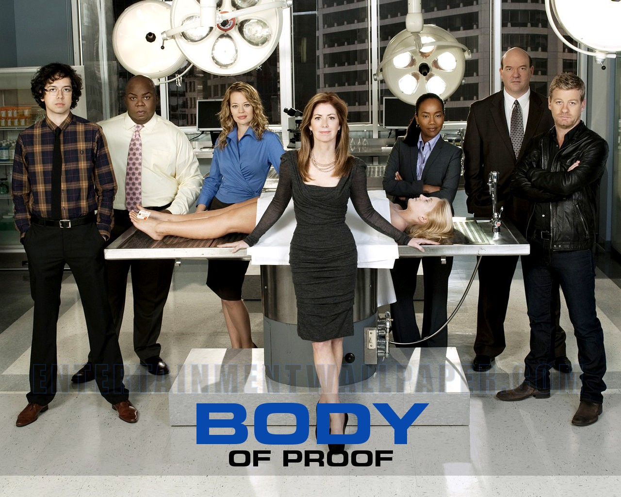 Body of Proof (2011 series)