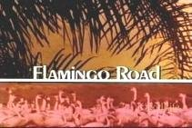 Flamingo Road (1980 series)