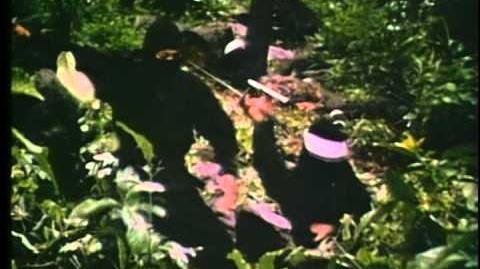 9 Deaths of the Ninja (Original Theatrical Trailer)