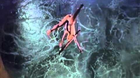 """Cirque_du_Soleil_-_""""O""""_Washington_Trapeze"""