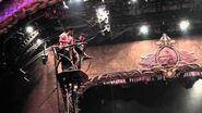 The Acrobatics of Zarkana from Cirque du Soleil