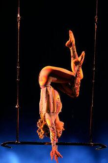 Washington Trapeze Aurora - O.jpg