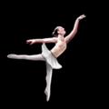 Icon civic opera ballet.png