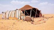 Bedouin - War