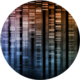 Future Worlds Human Genome Project.png