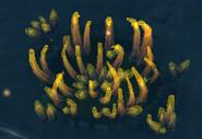 Firaxite aquatic (CivBE)