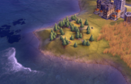 Forest on plains tile in-game (Civ6)