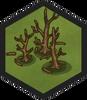 Burnt Forest (Civ6)