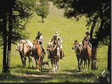 Horseback Riding (Civ2)