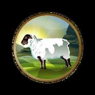 羊群 (文明5)