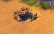 Oasis tile in-game (Civ6)
