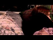 CREEPYPASTA- Putrid Love