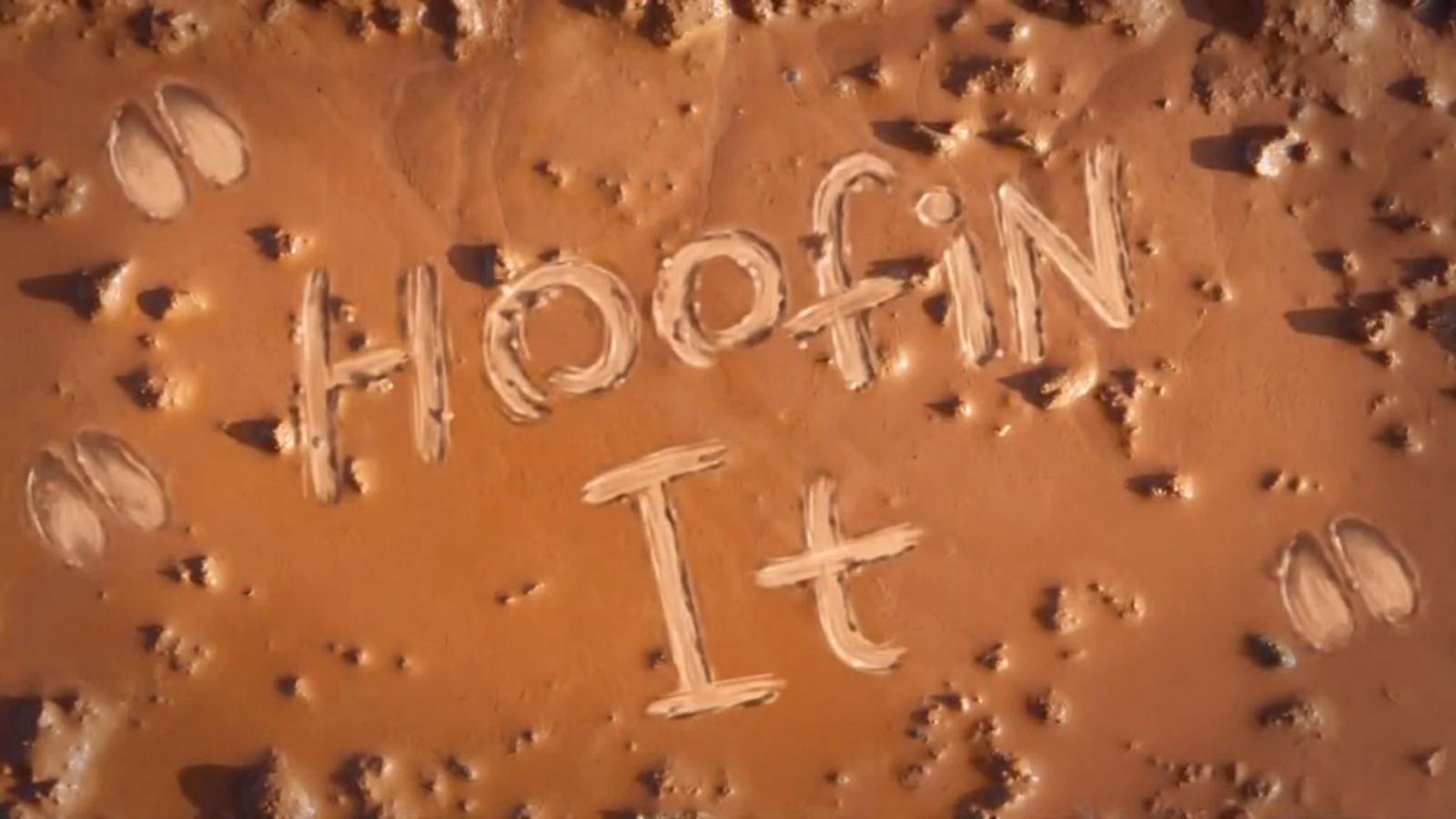 Hoofin' It.png