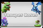 Boutons-troupesnormalesVP