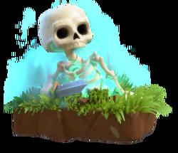 Skeleton info.png