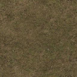 Grass01-color.jpg