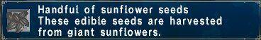 Sunflower seeds.jpg