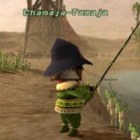 Chamaja-Tamaja