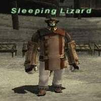 Sleeping Lizard