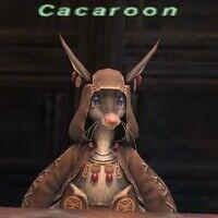 Cacaroon.jpg