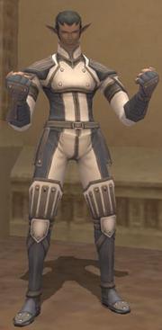 Magna Armor Set (Elvaan Male)
