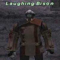 Laughing Bison