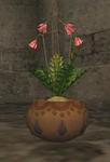 Vegetable seed flowering.png