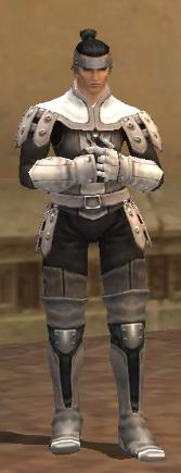 Cuir Armor Set