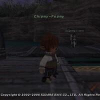Chipmy-Popmy