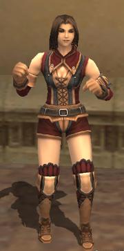 Custom Armor Set (Hume Female)