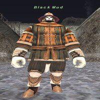 Black Mud.jpg