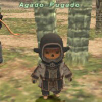 Agado-Pugado