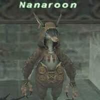 Nanaroon