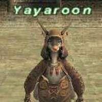 Yayaroon.jpg